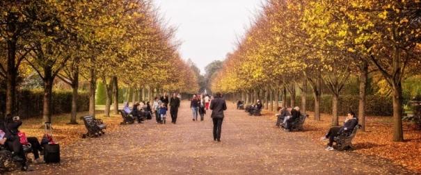 London-park-fall-940x626